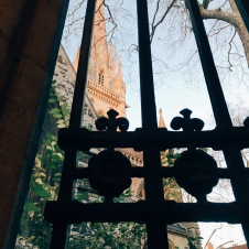 view from inside cloisters