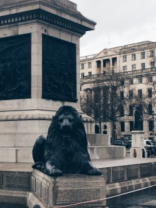 Lions in Trafalgar Square