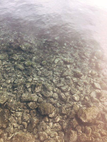 look how clear the water is !