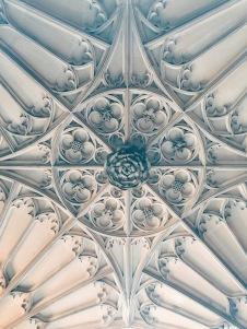 the Tudor Rose - a symbol ubiquitous around the castle