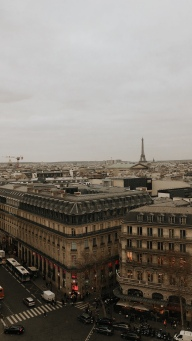 view of the Tour Eiffel from the rooftop of Galeries Lafayette
